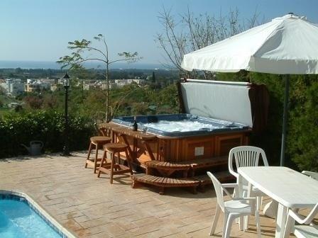 arctic spas hot tub next to pool2